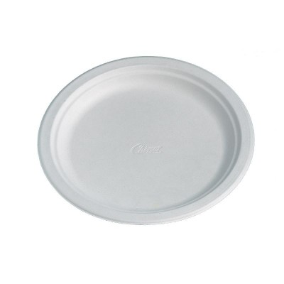 Disposable Round Plate White 240mm
