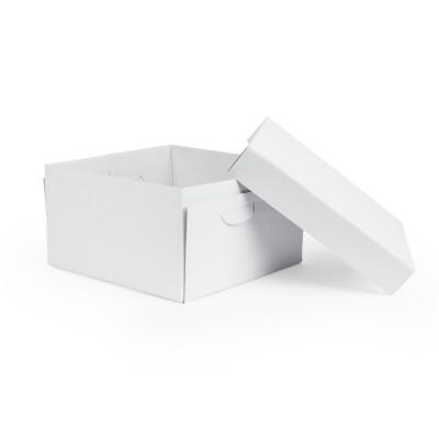 Cake Box 10in