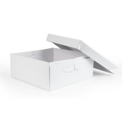 Cake Box 14in